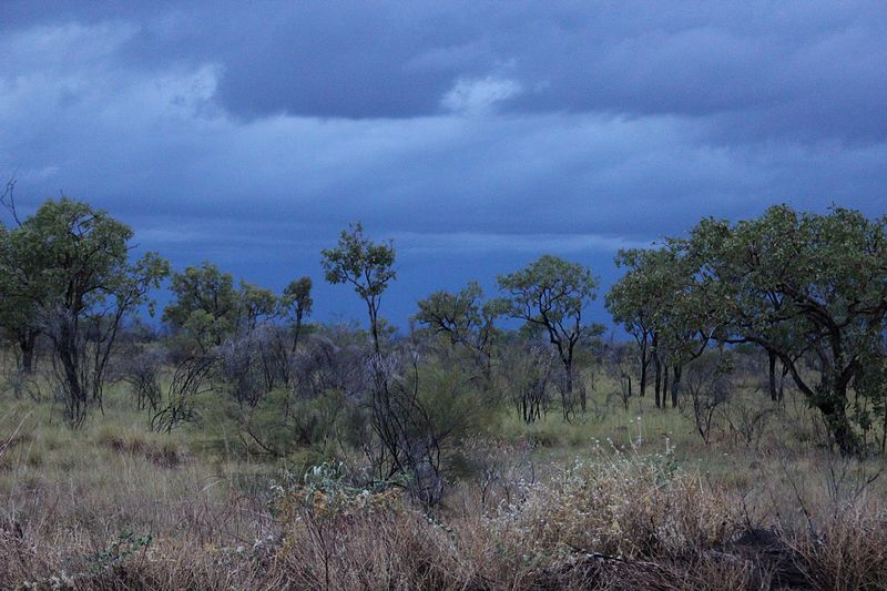 Stormy Sunrise on the Barkly