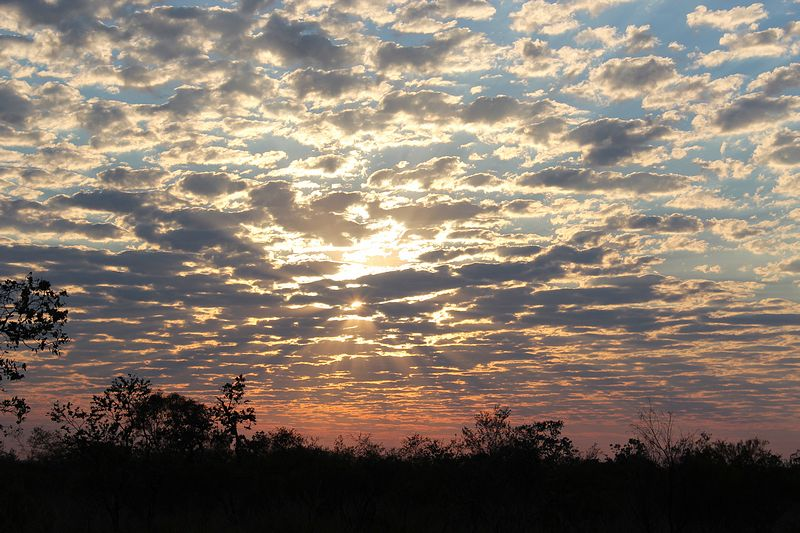 Sunrise on the Barkly 12th Nov